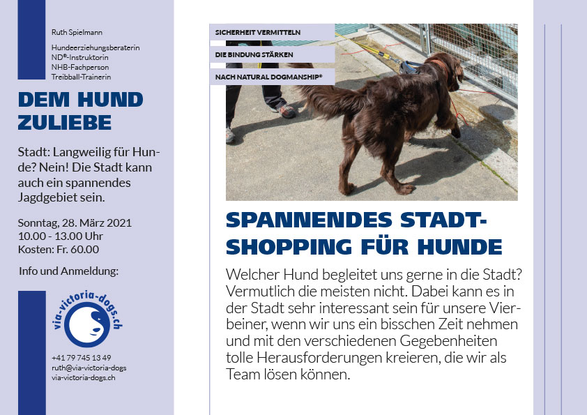 Flyer Stadtshopping